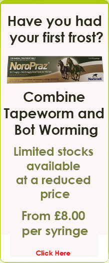 Combine Tapeworm and Bot Worming